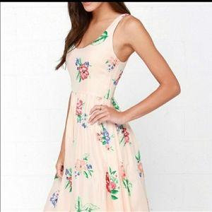 BB DAKOTA champagne floral silk dress new size 4